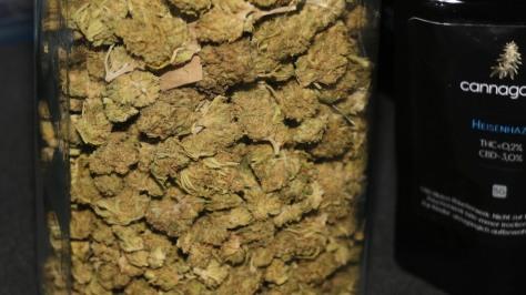 CBD Marihuana 2018