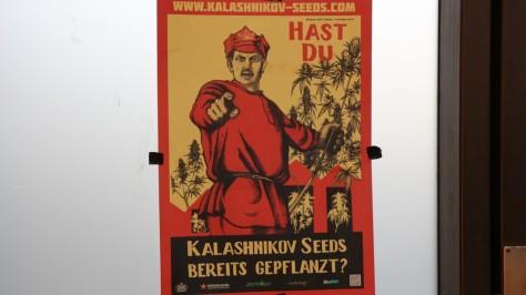 Kommunist ermahnt zum Pflanzen von Marihuana