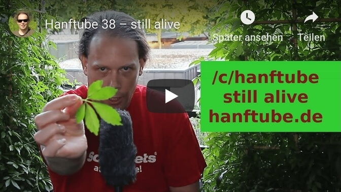 Hanftube startet erneut durch – still alive Video auf YouTube