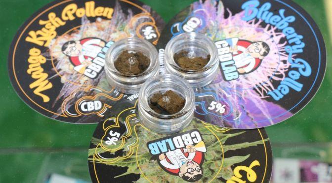 Geschäftemacher im Rausch der Cannabis Legalisierung
