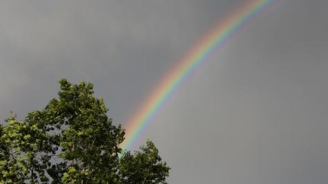 Ein Regenbogen im grauen Himmel