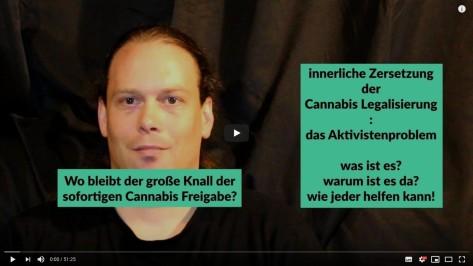 Video-Analyse zum Cannabis Aktivistenproblem mit Lösungsansatz